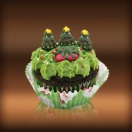 Christmas Day Cake and Festive Cupcakes