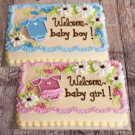 Newborn Girl or Boy Cake